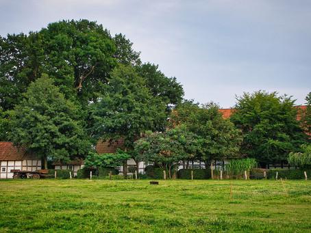 Stadt Land Bus Camping Blog - Der Artländer Eselhof
