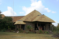 Thatch Protection Services