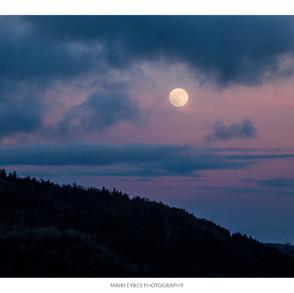 No. 63, 15th January: Moonrise