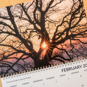 No. 51, 23rd October: Calendars and other news
