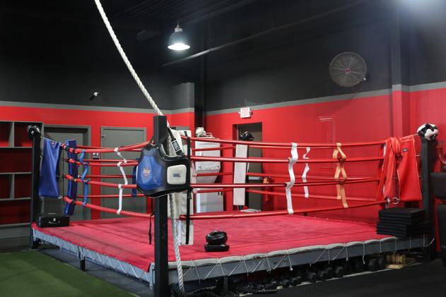 14 X 14 Boxing Ring