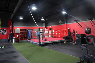 14 X 14 Boxing Ring & Astroturf For Training