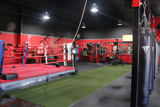 Heavy Bags, 14 X 14 Boxing Ring & Astroturf For Training