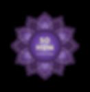 SoHum_PurpleLogo-03.png