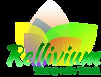Company Logo.png - Copy.png