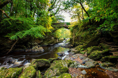 28062_Roe Valley Country Park.jpg