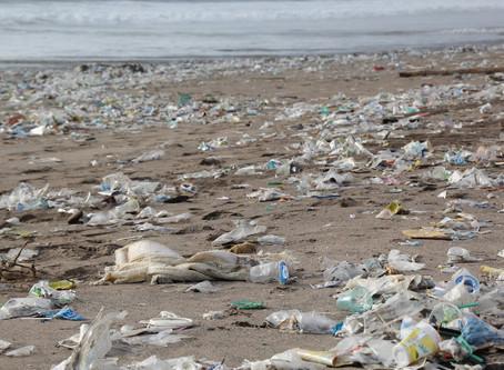 Reducing Plastic Waste.