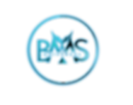 LOGO%20BMS%20OFICIAL_edited.png