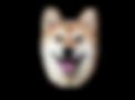 Shiba Inu rostro