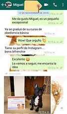 testimonio_criadero_bulldog_francés_vict