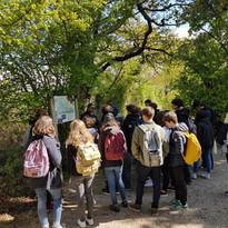 Parc ornithologique du Teich avril 2019