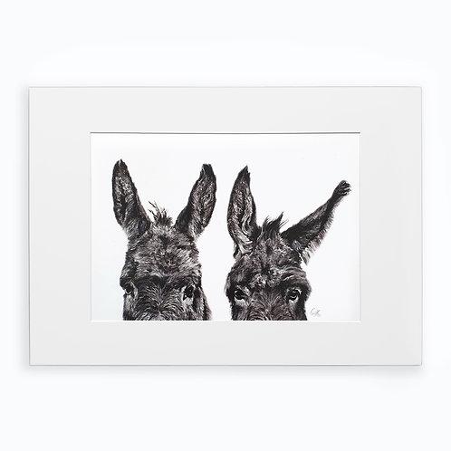 Graphite Donkey Study
