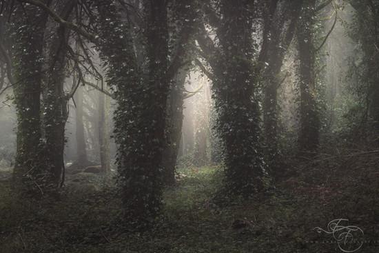 A-Dark-Passage.jpg
