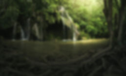 DP2020-Waterfall.jpg