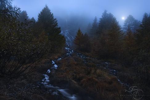 Dream-of-a-Autumn's-Night.jpg