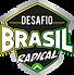 LOGO DESAFIO BRASIL RADICAL 2021- 01.png