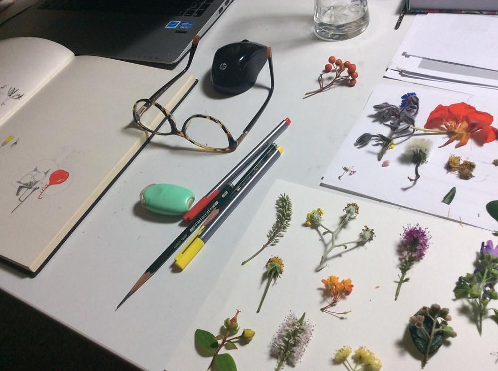 My studies of nature. :)