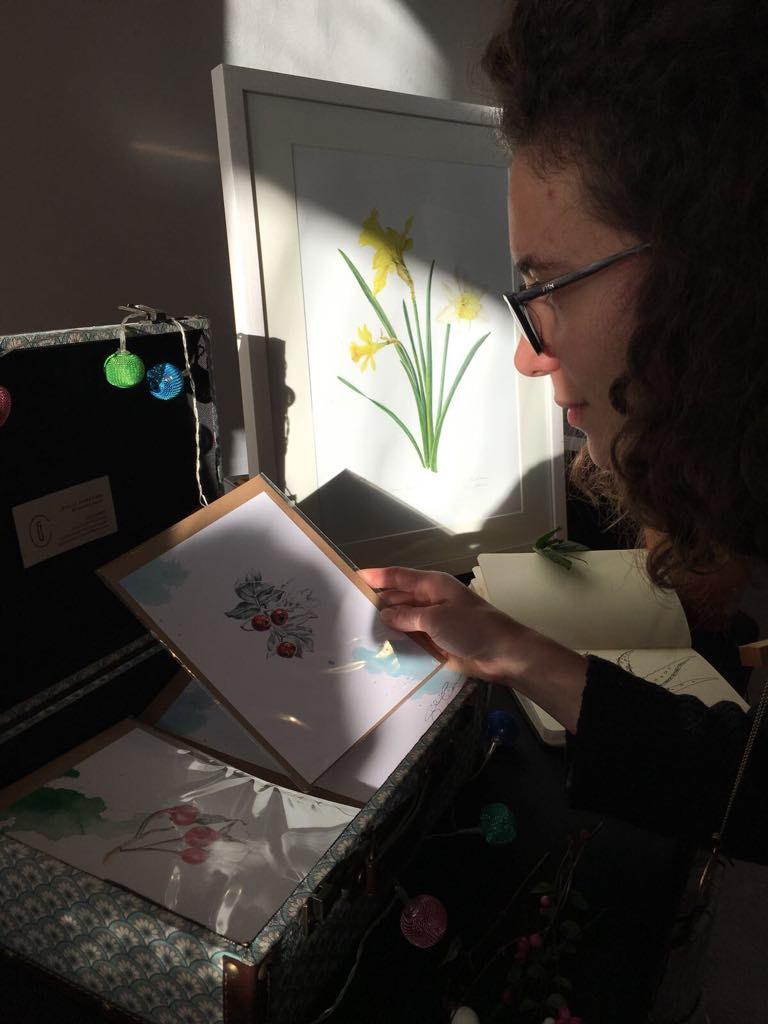 Giulia Canevri and her botanical art.