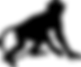 silhouette singe.png