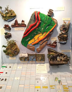 Rocks and Minerals Exhibit 2.jpg