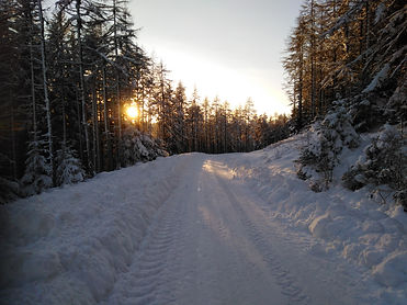 Winter roads.jpg