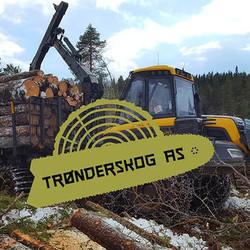 Trønderskog