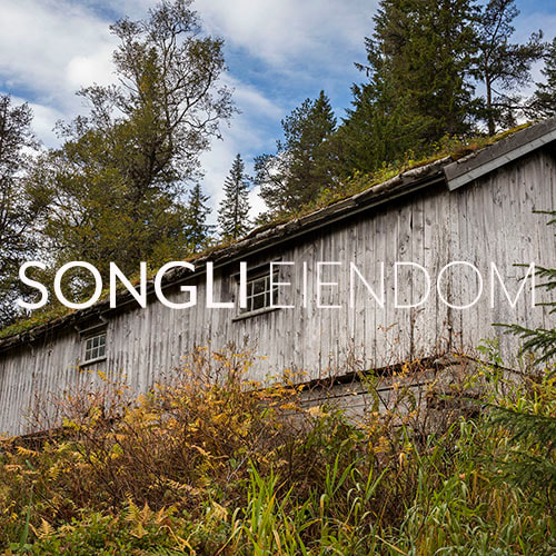 Songli Eiendom
