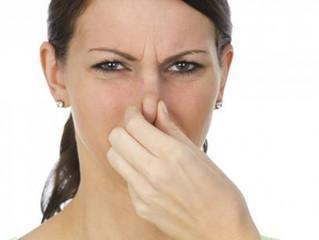 Com apenas algumas dicas você pode eliminar o cheiro de esgoto dentro de casa
