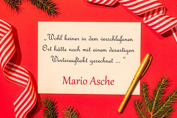 Mario Asche.png