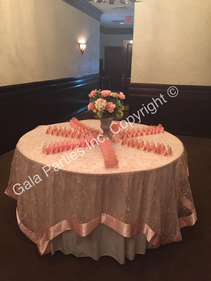 Blush Entrance Place card table DIY Wedding Reception Event