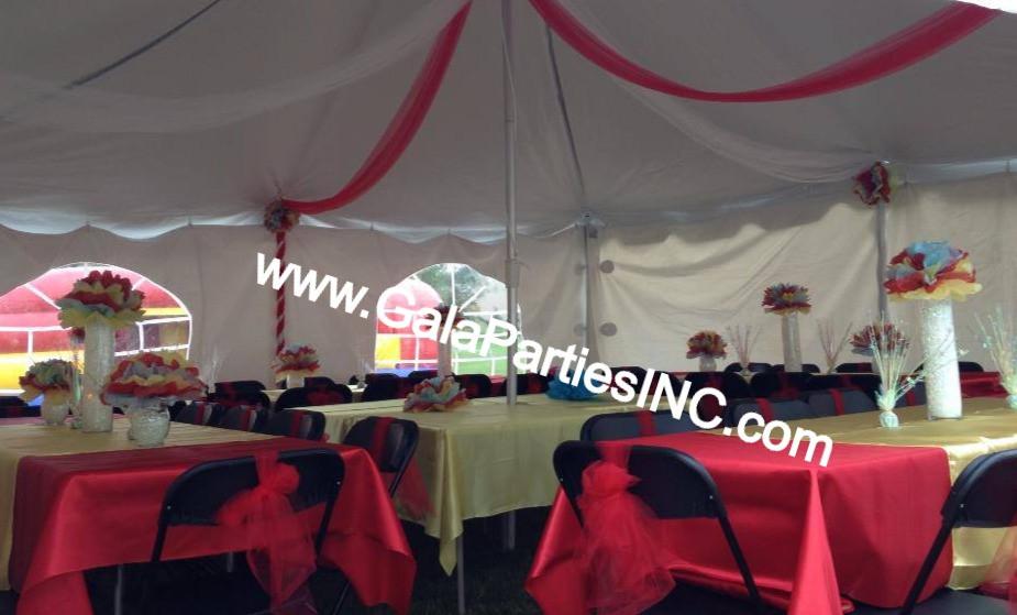Tent Decor Outdoor Micro Wedding Party Event DIY