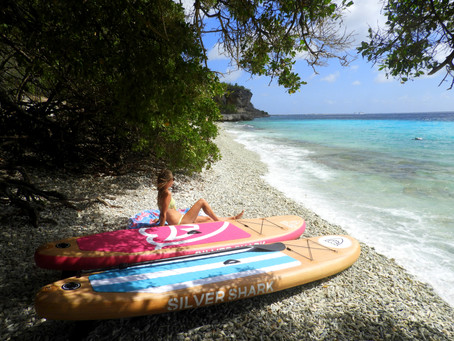 Paddle board destinations for snowbirds