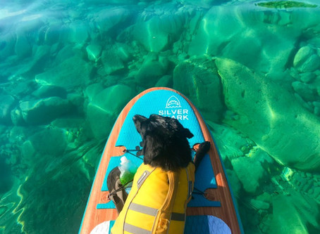 Ontario's Caribbean of the north: The ultimate paddle board destination
