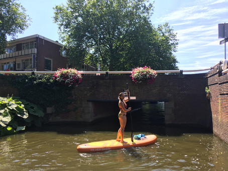 paddle boarding in the netherlands