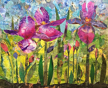 Collage - Family of Iris Flowers - June
