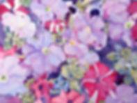 SUN_0835 kelli petunias final.jpg