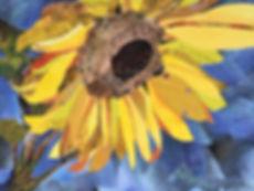 Collage - Sunflower.JPG