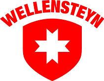 Wellensteyn-Logo RZ.jpg