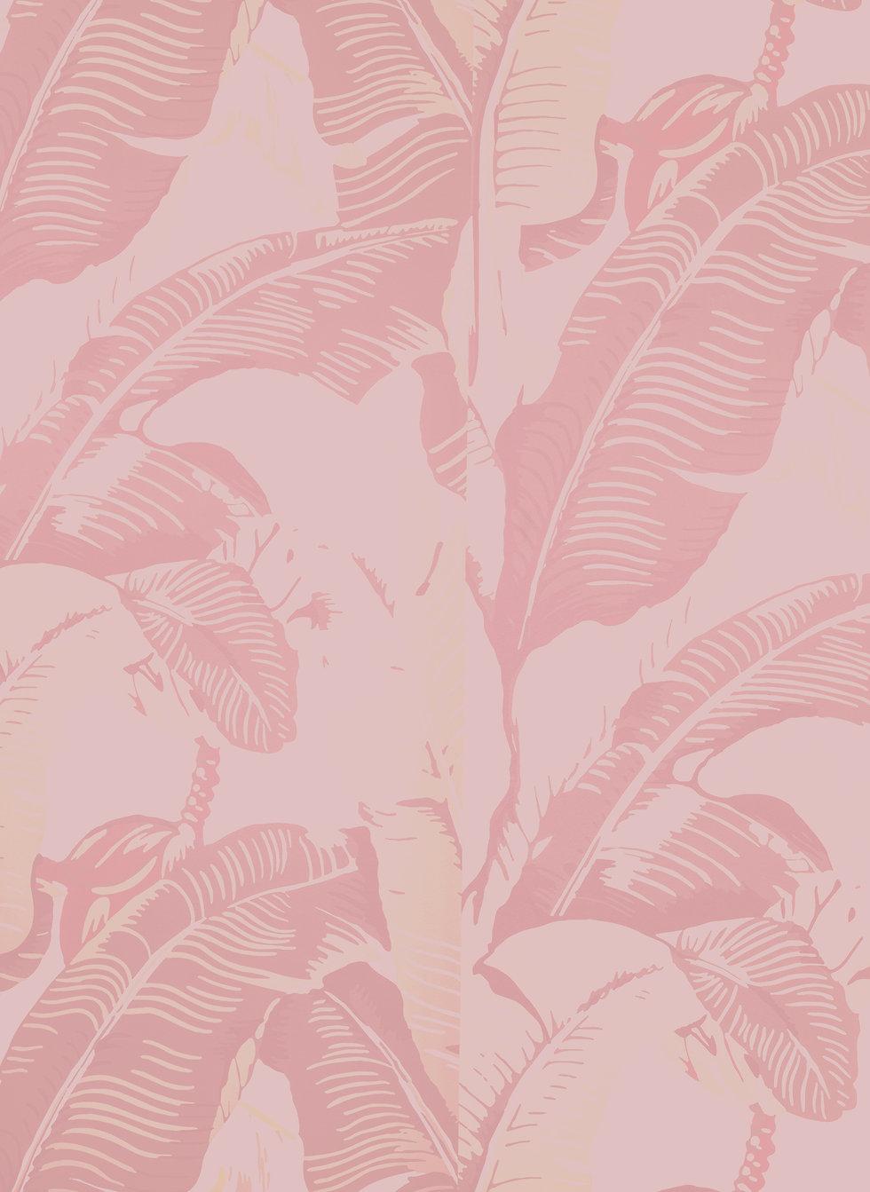 sfondo-rosa.jpg