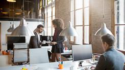 Empresas de TI, start-ups e comércio eletrônico
