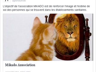 Lancement de la Page Facebook de l'Association MIKADO