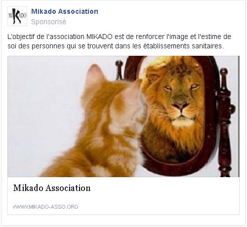 mikado association facebook 2.png