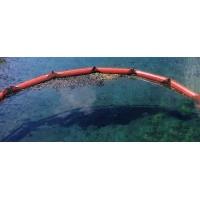 Jelly Fish Boom