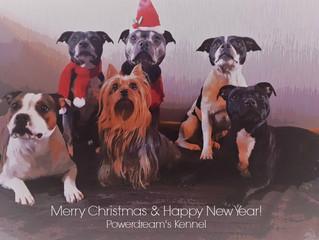 Vi Önskar er alla en God Jul och Ett gott 2017!