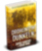 DROHUNG-IM-DUNKELN-GERMAN-RF-3D-cover.pn