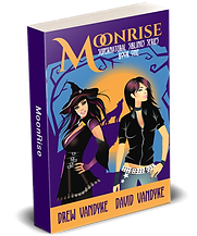 MoonRise-RF-3D-cover-small.png