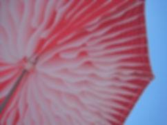lara concept, sywawa şemsiye