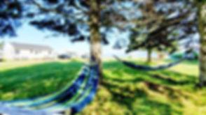 20200726_124016_edited_edited.jpg