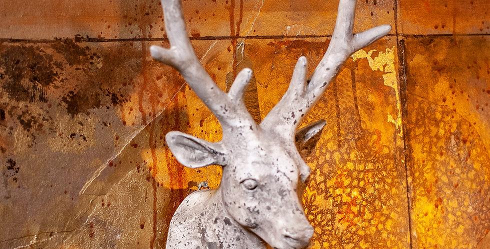 Hanging Deer Head