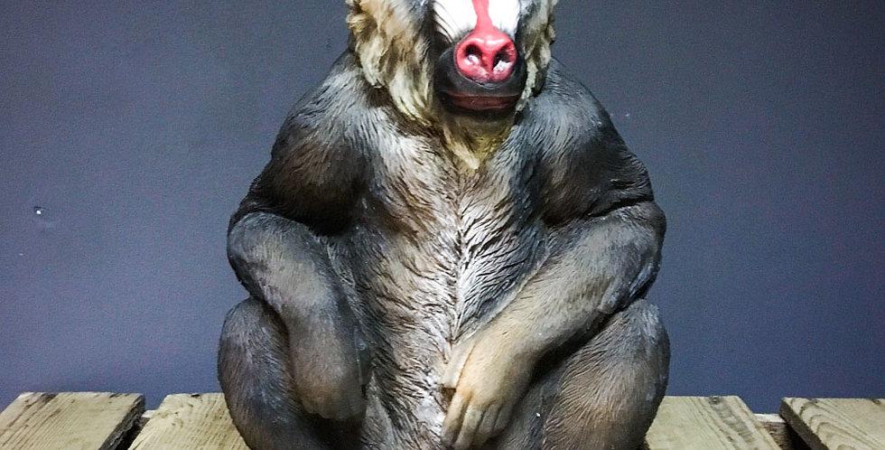 Sitting Baboon figure
